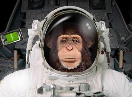 monkey astronaut movie - photo #3